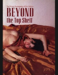 Beyond the Top Shelf by Eric Wilkins